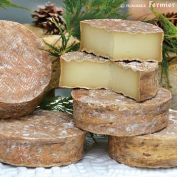 【今月のチーズ】エルッチャ ELUTCHA