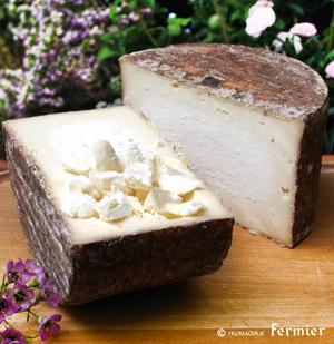 【今月のチーズ】ロッコロ ROCCOLO