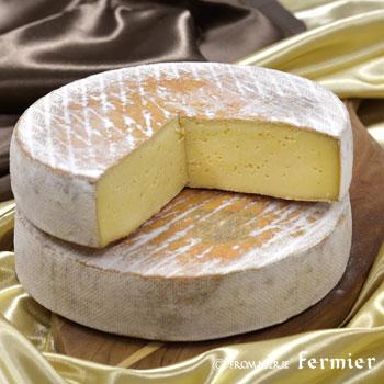 【今月のチーズ】サン ネクテール SAINT-NECTAIRE