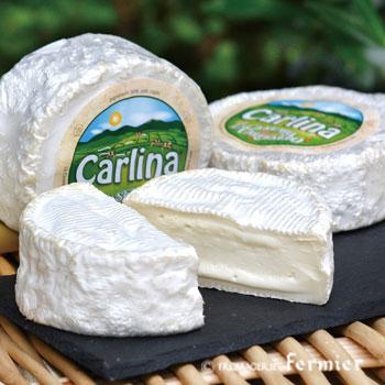 【今月のチーズ】カルリーナ CARLINA