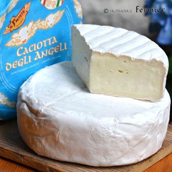 【今月のチーズ】カチョッタ デリ アンジェリ CACIOTTA DEGLI ANGELI